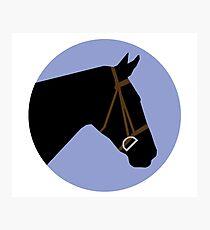 Minimalist Horse → Black/Lavender  Photographic Print