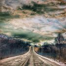 Winter Day, Kansas City, Missouri by Robert Baker