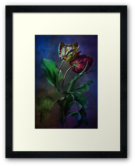 Tulips by andy551