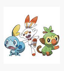 Lámina fotográfica Pokemon épée, Pokemon Bouclier arrancadores versión blanca