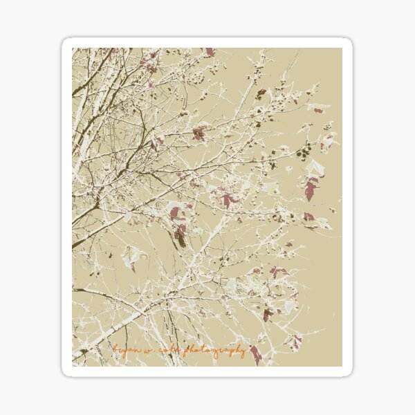 Coffee colored leaves and branches Sticker