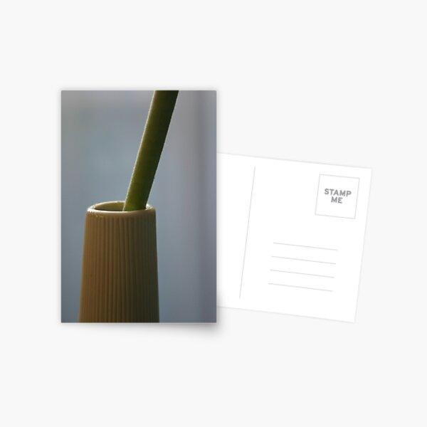 Green & white Postcard