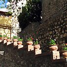 Stepping Flower Pots by jules572