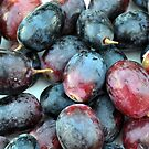 Lovely Grapes by MandaP