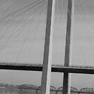 Cable Bridge by MandaP