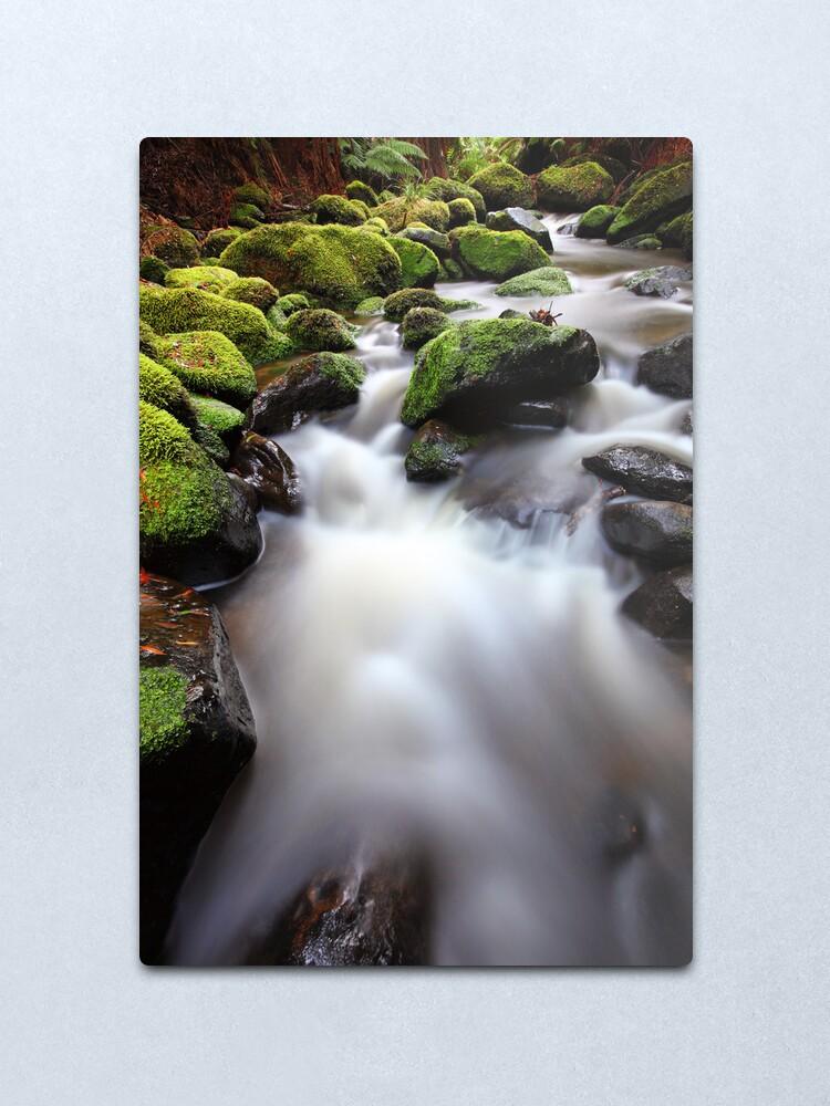 Alternate view of Verdant Stream, Otways, Great Ocean Road, Australia Metal Print