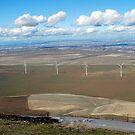Five Windmills by MandaP