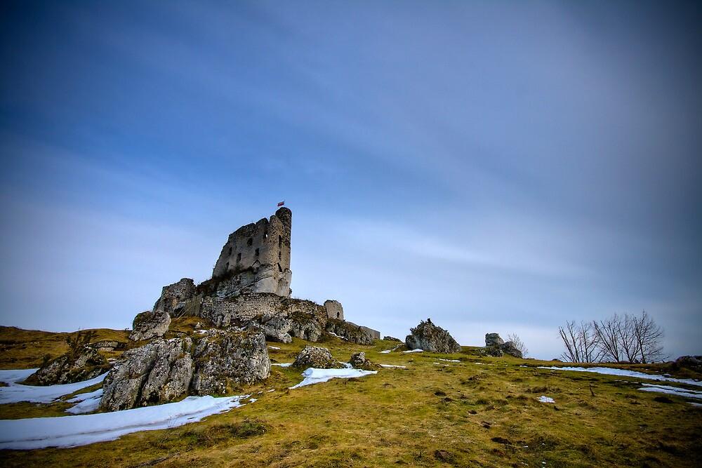 Trail of the Eagles' Nests I by mosinski
