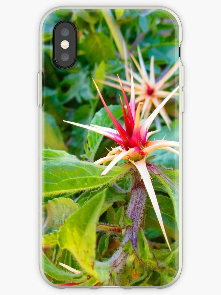 The Desert Flower by nxyrhdk1234