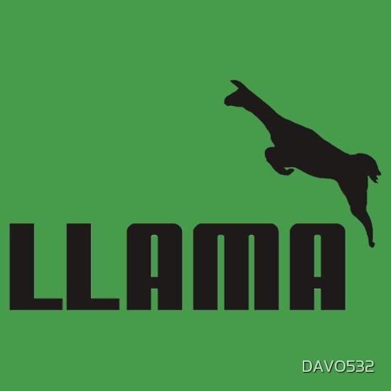 TShirtGifter presents: llama