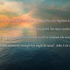 Da Gott die Welt so liebte von Linda Perry McCarthy