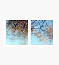 Autumn Impressions - Diptych #1 Photographic Print