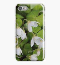 Oxalis iPhone Case/Skin