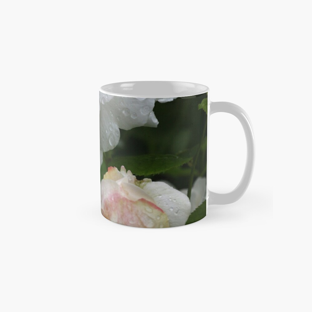 English Rose Winchester Cathedral Mug