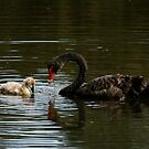 The Ugly Duckling and his Mother by Leigh Penfold