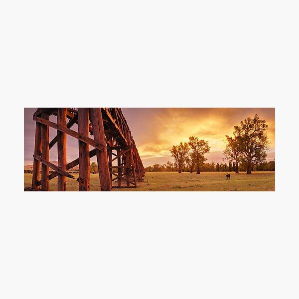 Gundagai Railway Bridge Sunset, New South Wales, Australia Photographic Print