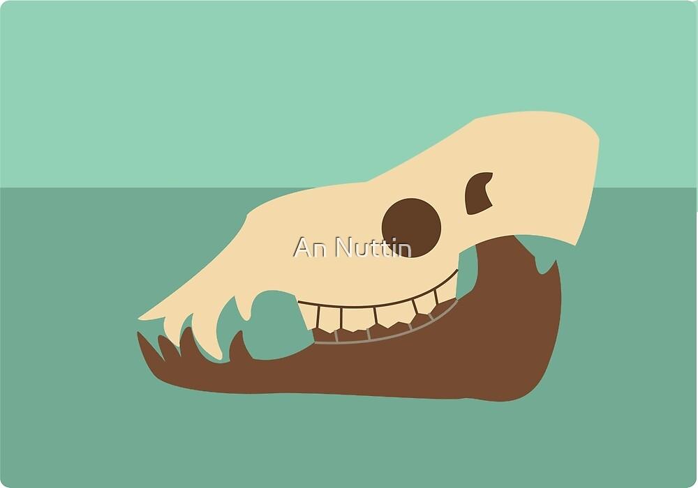 Camel skull by An Nuttin