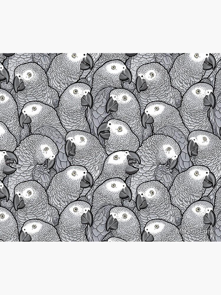 African Grey Parrots by MaratusFunk