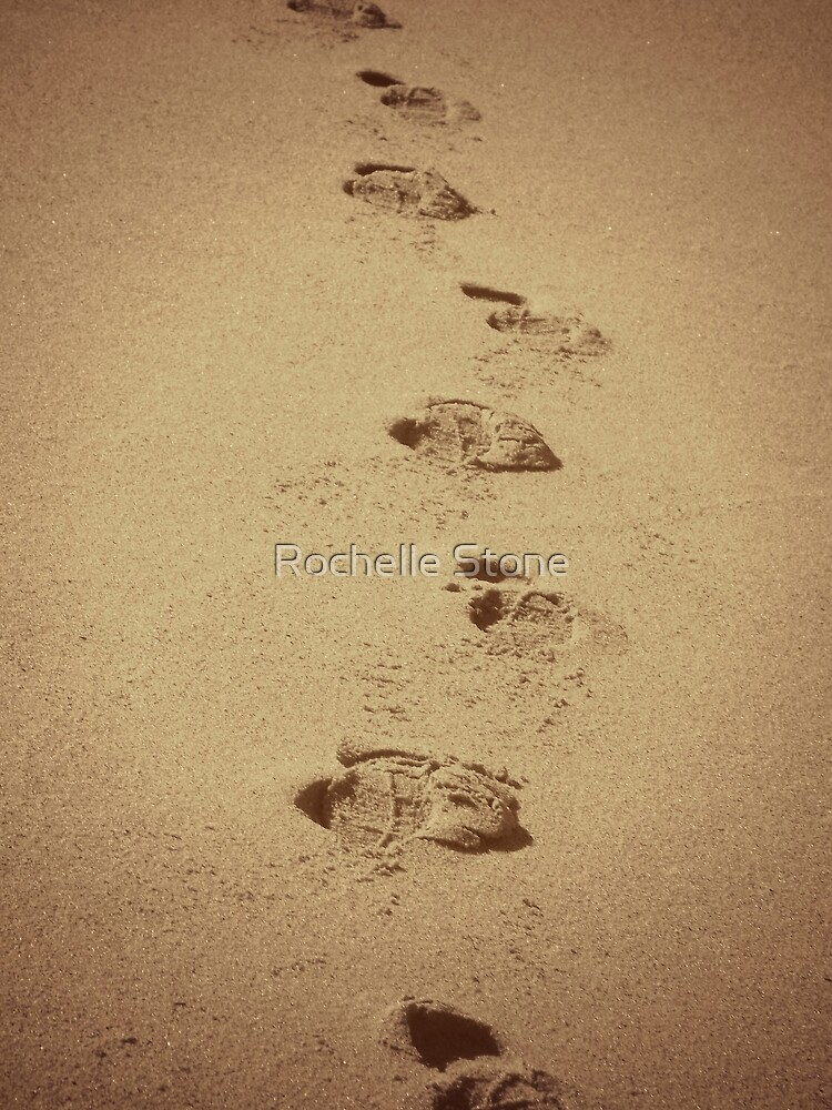 Footprints In The Sane by Rochelle Stone