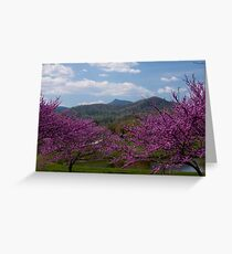 Mountain Spring Time Greeting Card