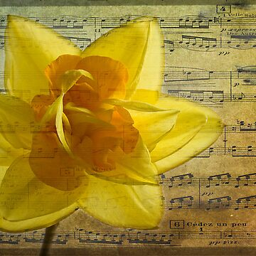 Symphony in yellow by inkedsandra