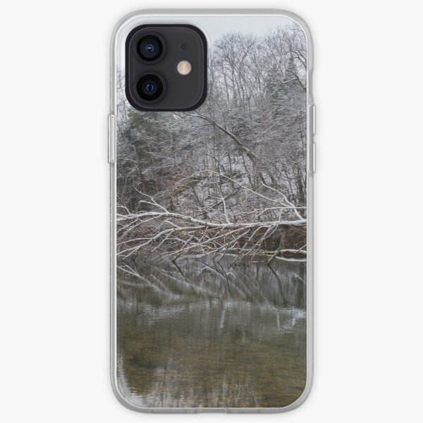 Fallen Reflections At Finley iPhone Soft Case