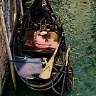 The Gondola by Ann Garrett