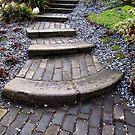 Steps by Carol Bleasdale