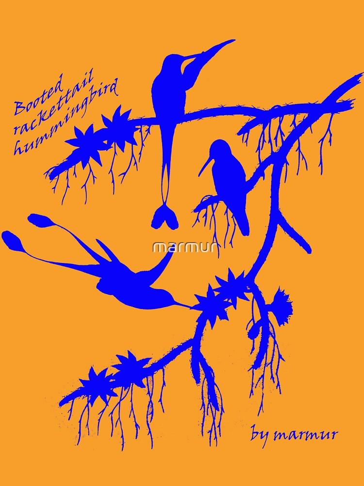 Blue booted rackettail hummingbird by marmur