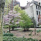 Spring In Tudor City by joan warburton