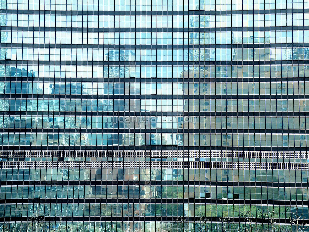 Reflection In United Nations by joan warburton