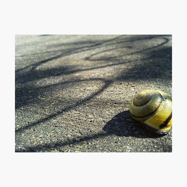 Shadow Trail Photographic Print