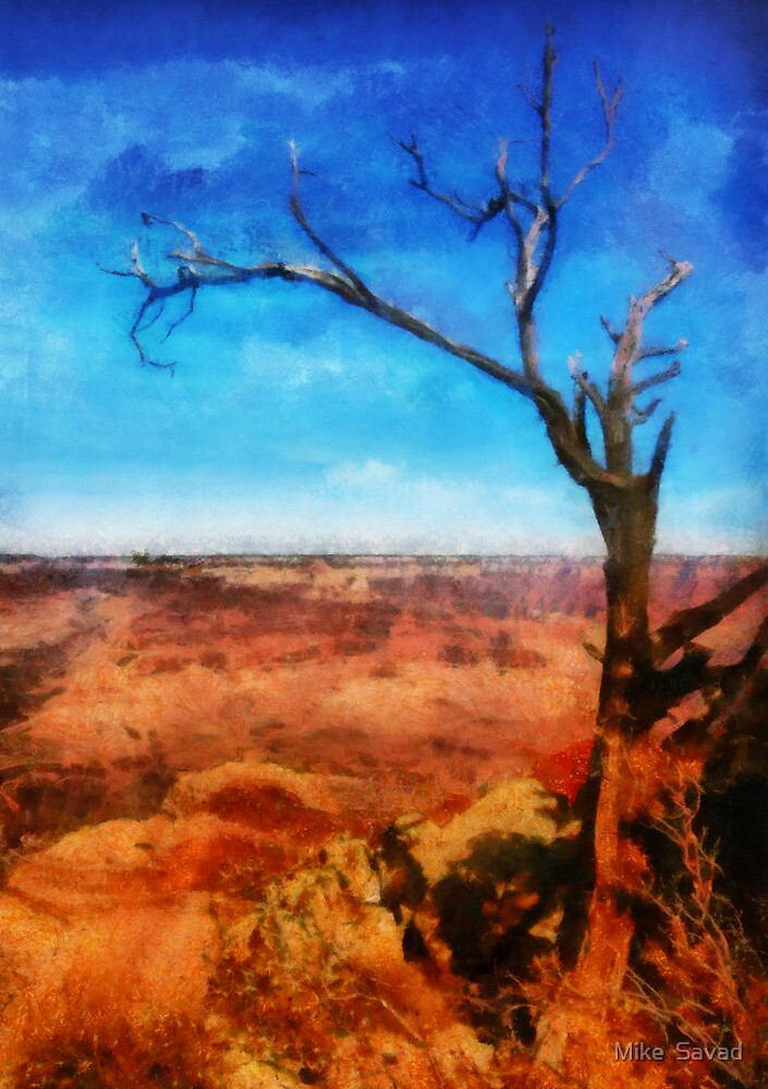 Grand Canyon - My leaves are long gone by Michael Savad