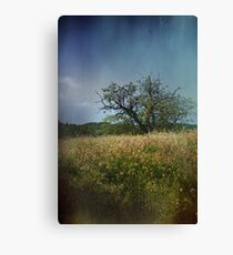 Make It Last Forever Canvas Print