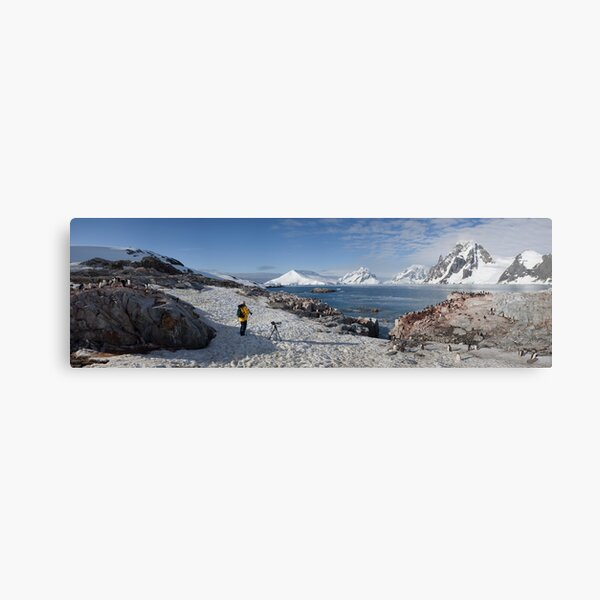 At the edge of the colony Canvas Print