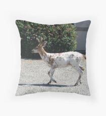 """Albino Deer"" Throw Pillow"