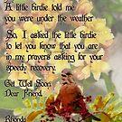 Get Well Sherri by Rhonda Strickland