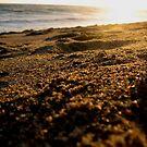 Beach Crystals by Jennifer  Gaillard