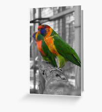 Rainbow Wings Greeting Card