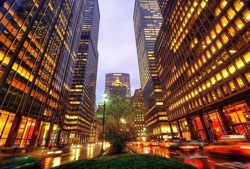 New York by Svetlana Sewell