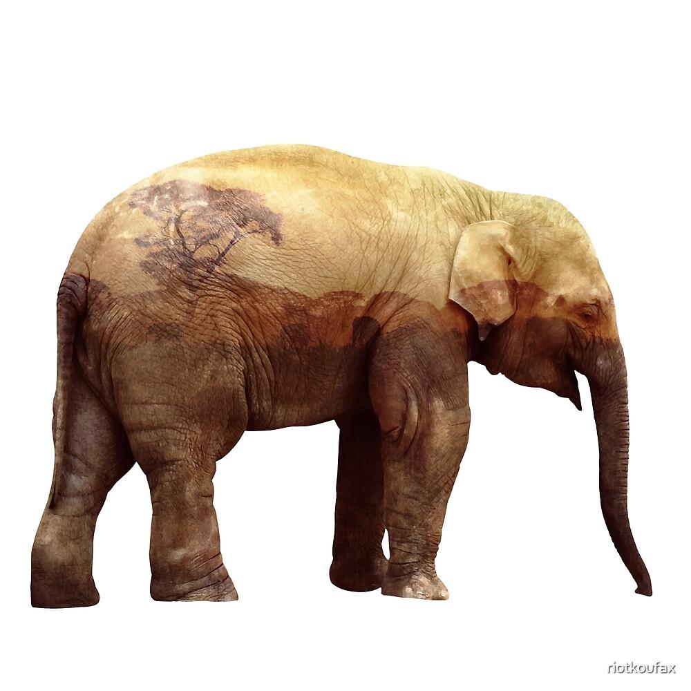 Elephant in the Savanna by riotkoufax
