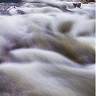 Boulder Creek by Bo Insogna