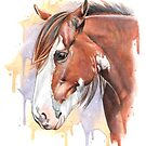 Clydesdale by Holley-Ryan