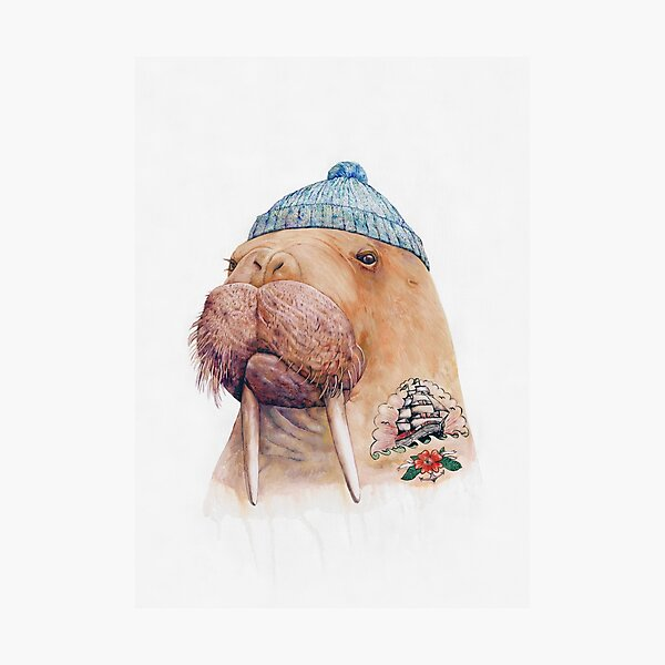 Tattooed Walrus Photographic Print