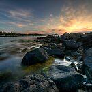 Harbor Dawn by Sue  Cullumber