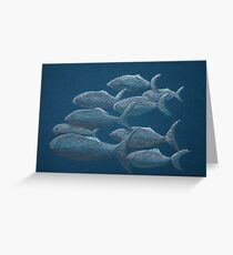 Shoal Greeting Card