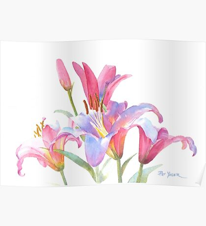 Watercolor Lilies Poster