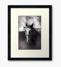 Horse In Stable Framed Print
