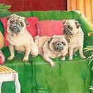 Pugs - Good company by doggyshop