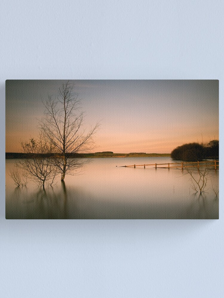 Alternate view of Tranquil Canvas Print